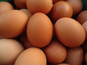 OVO FARM - A HYGIENIC APPROACH TO ACHIEVE THE BEST QUALITY EGGS